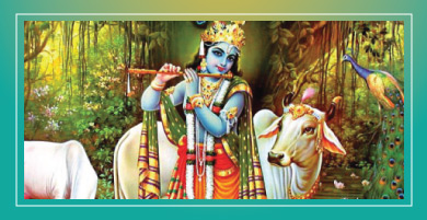 KNOWING KRISHNA