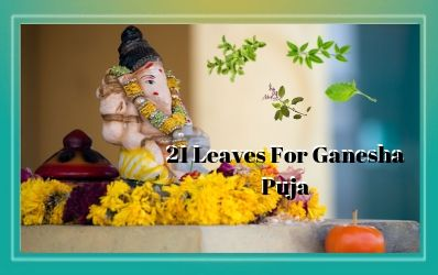 List of 21 Leaves/Patra For Ganesha Puja