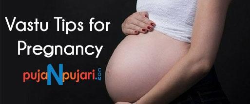 VastuTipsForWealthAnd    Pregnancy